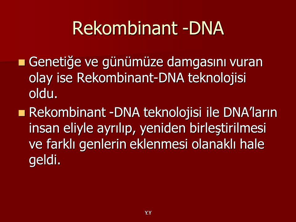 Y.Y Rekombinant -DNA Genetiğe ve günümüze damgasını vuran olay ise Rekombinant-DNA teknolojisi oldu. Genetiğe ve günümüze damgasını vuran olay ise Rek