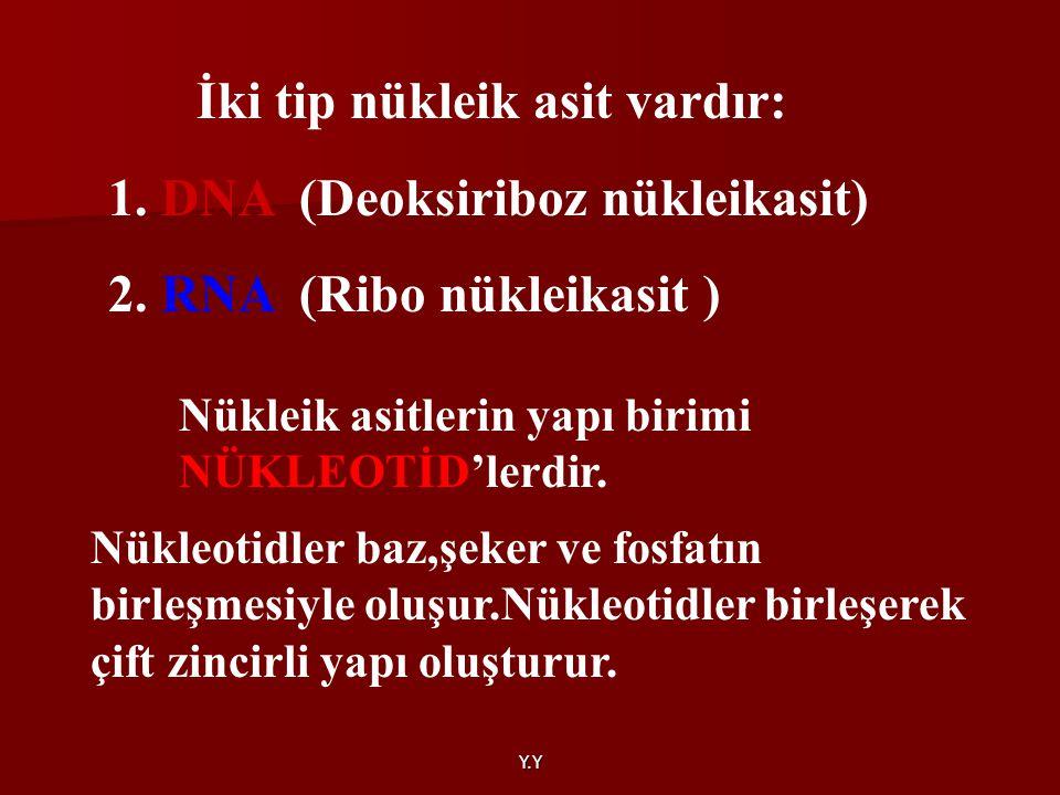 Y.Y İki tip nükleik asit vardır: 1. DNA (Deoksiriboz nükleikasit) 2. RNA (Ribo nükleikasit ) Nükleik asitlerin yapı birimi NÜKLEOTİD'lerdir. Nükleotid