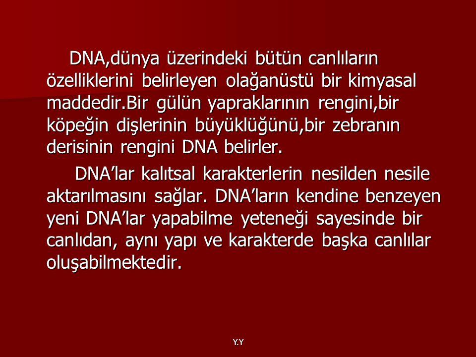 Y.Y DNA,dünya üzerindeki bütün canlıların özelliklerini belirleyen olağanüstü bir kimyasal maddedir.Bir gülün yapraklarının rengini,bir köpeğin dişler