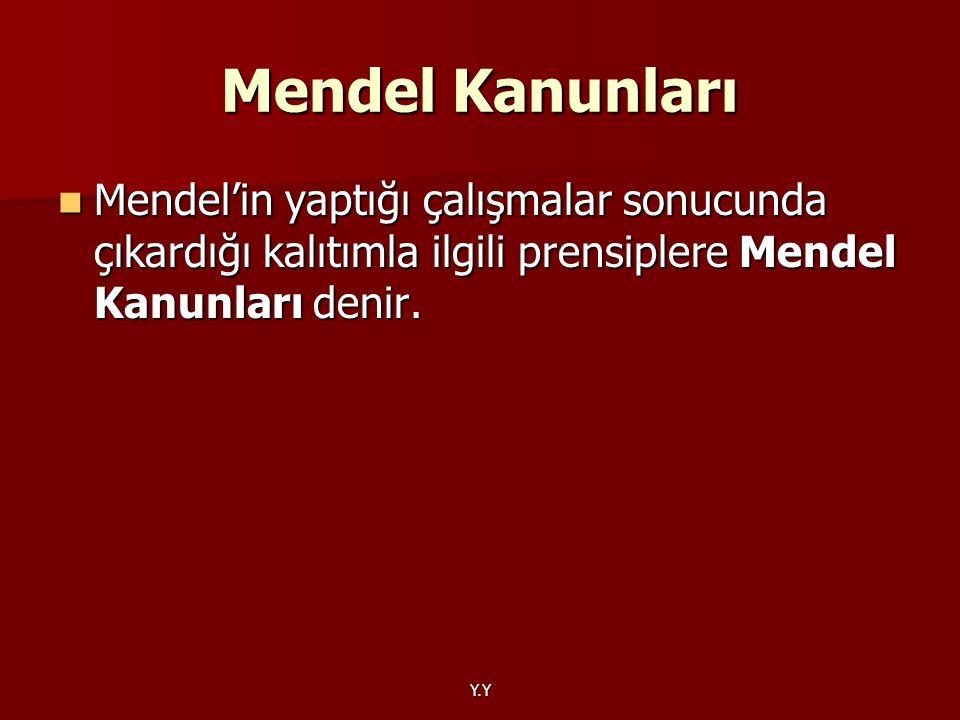 Y.Y Mendel Kanunları Mendel'in yaptığı çalışmalar sonucunda çıkardığı kalıtımla ilgili prensiplere Mendel Kanunları denir. Mendel'in yaptığı çalışmala
