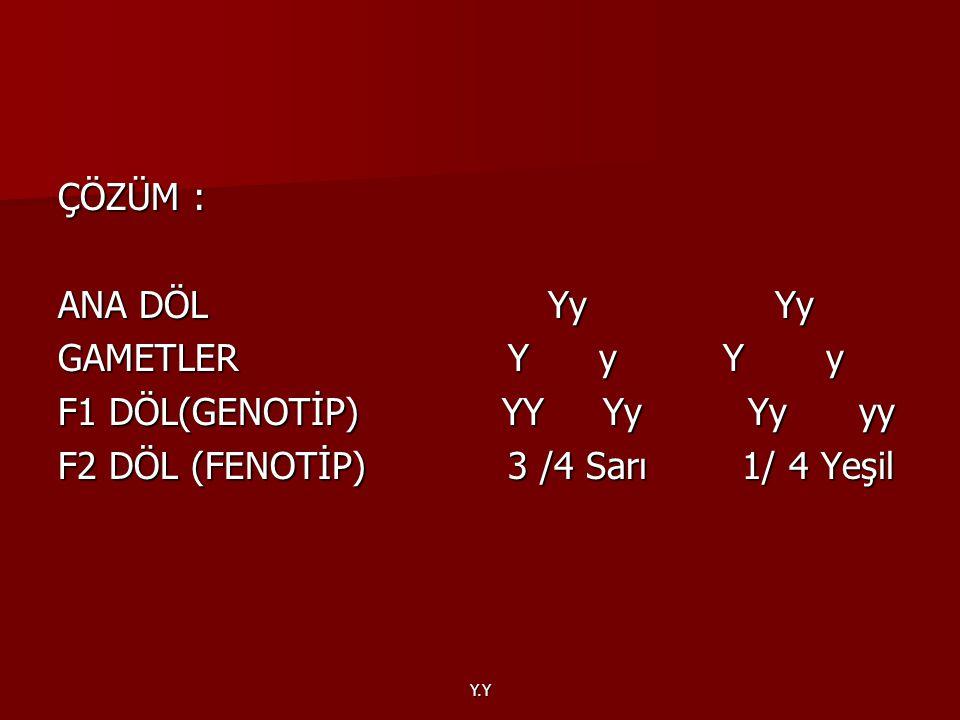 Y.Y ÇÖZÜM : ANA DÖL Yy Yy GAMETLER Y y Y y F1 DÖL(GENOTİP) YY Yy Yy yy F2 DÖL (FENOTİP) 3 /4 Sarı 1/ 4 Yeşil