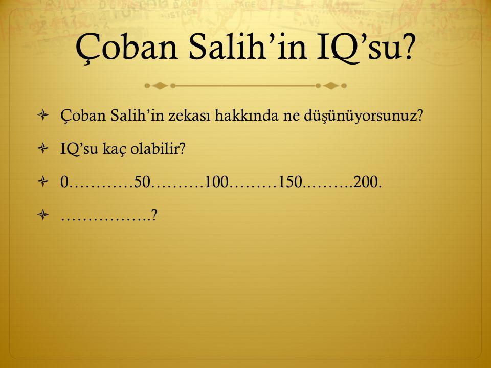Çoban Salih'in IQ'su.  Çoban Salih'in zekası hakkında ne dü ş ünüyorsunuz.