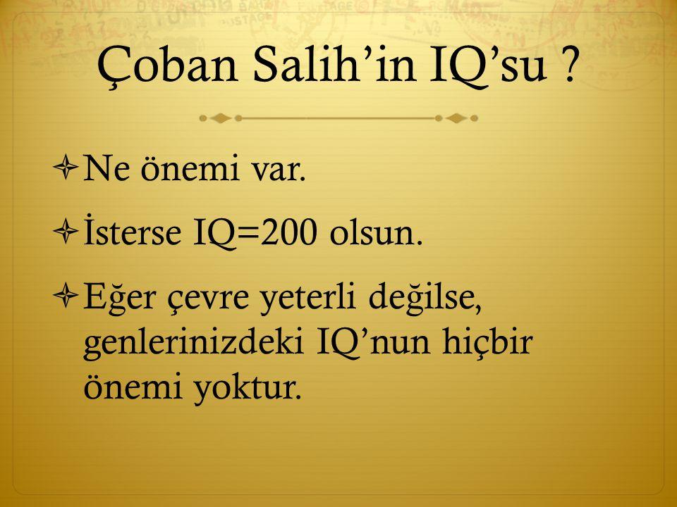 Çoban Salih'in IQ'su .  Ne önemi var.  İ sterse IQ=200 olsun.