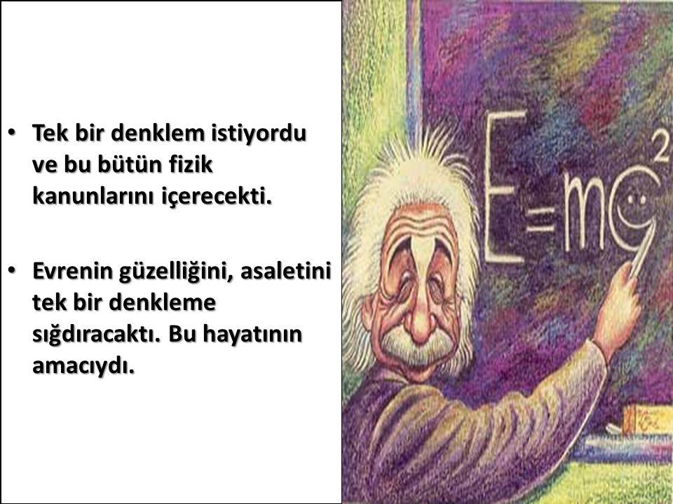Tek bir denklem istiyordu ve bu bütün fizik kanunlarını içerecekti. Tek bir denklem istiyordu ve bu bütün fizik kanunlarını içerecekti. Evrenin güzell