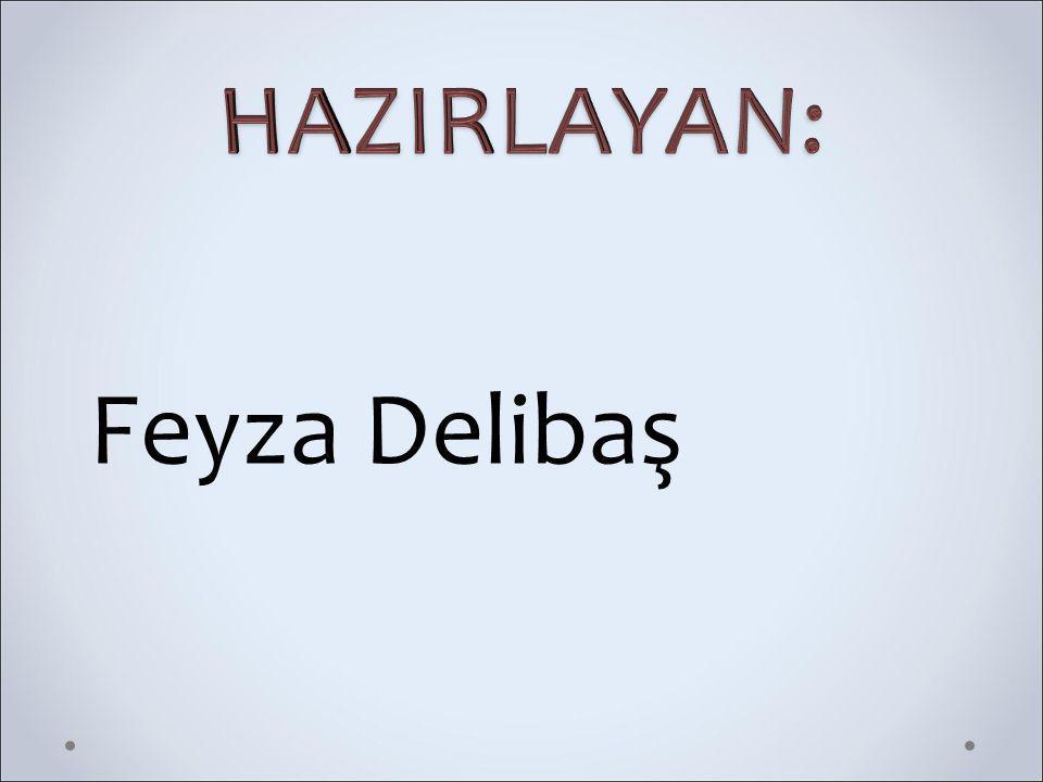 Feyza Delibaş
