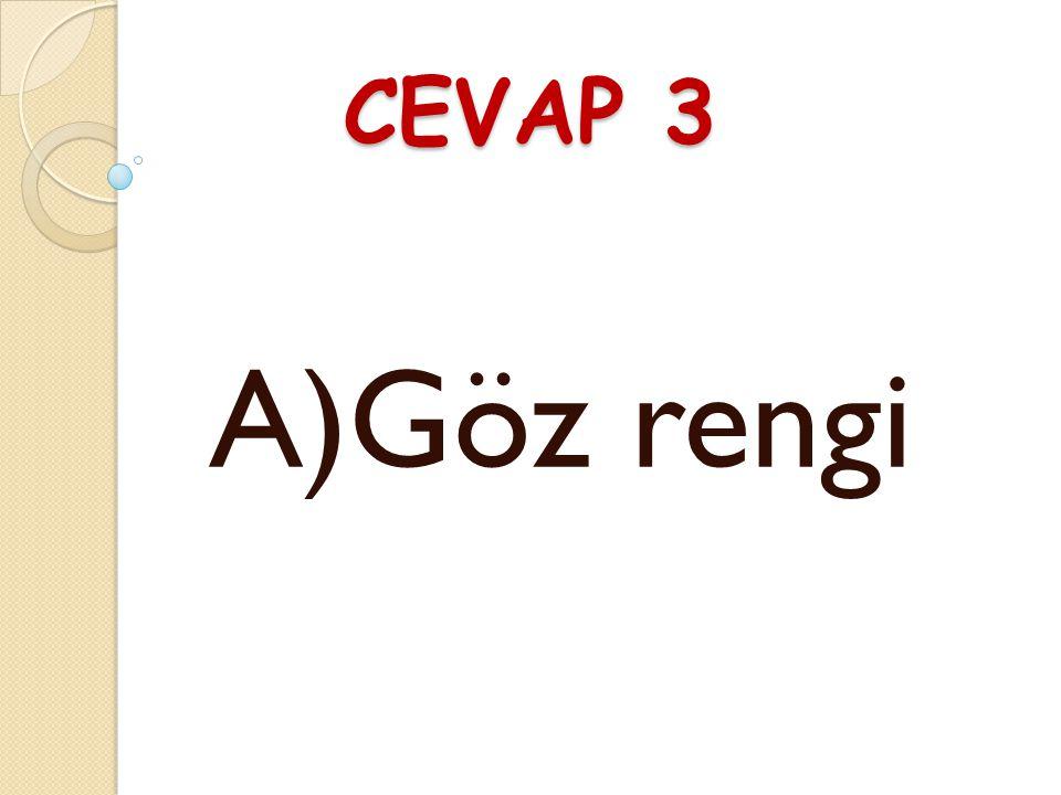 SORU 3 Hangisi fiziksel özelliklerimizdendir? A)Göz rengi B) Düşüncelerimiz C) Zeka