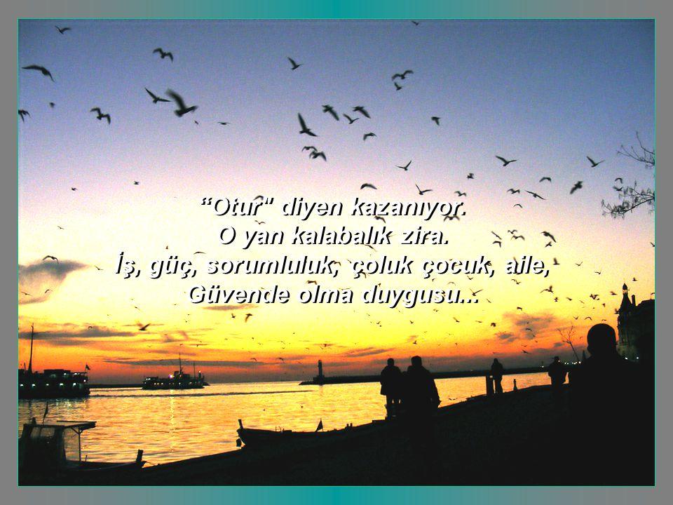 sevgi.anne@mynet.com grafik-animasyon e.nurhan köroğlu grafik-animasyon e.nurhan köroğlu