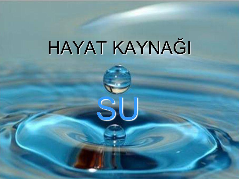 OLMADAN OLMAZ… SU; İnsanoğlunun yaşaması için gerekli olan temel maddelerden biri.