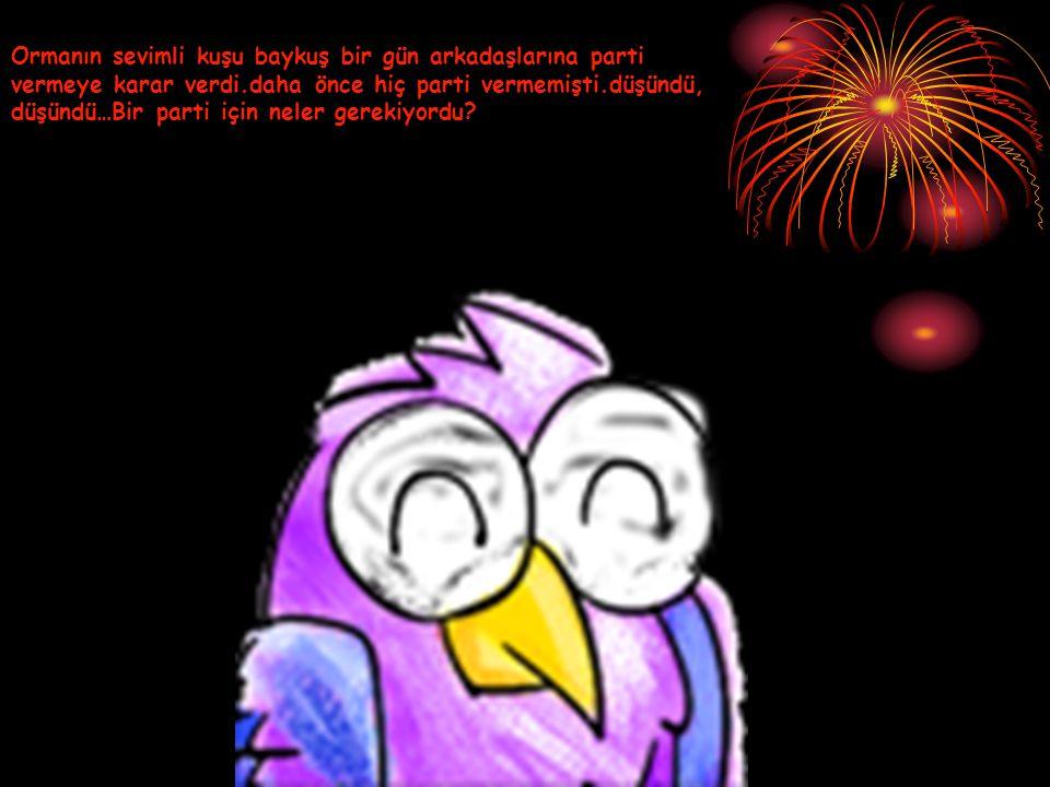 Ormanın sevimli kuşu baykuş bir gün arkadaşlarına parti vermeye karar verdi.daha önce hiç parti vermemişti.düşündü, düşündü…Bir parti için neler gerekiyordu?