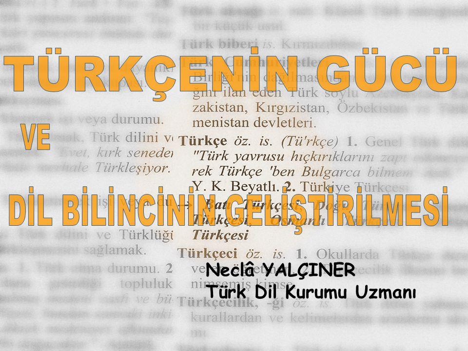 Neclâ YALÇINER Türk Dil Kurumu Uzmanı
