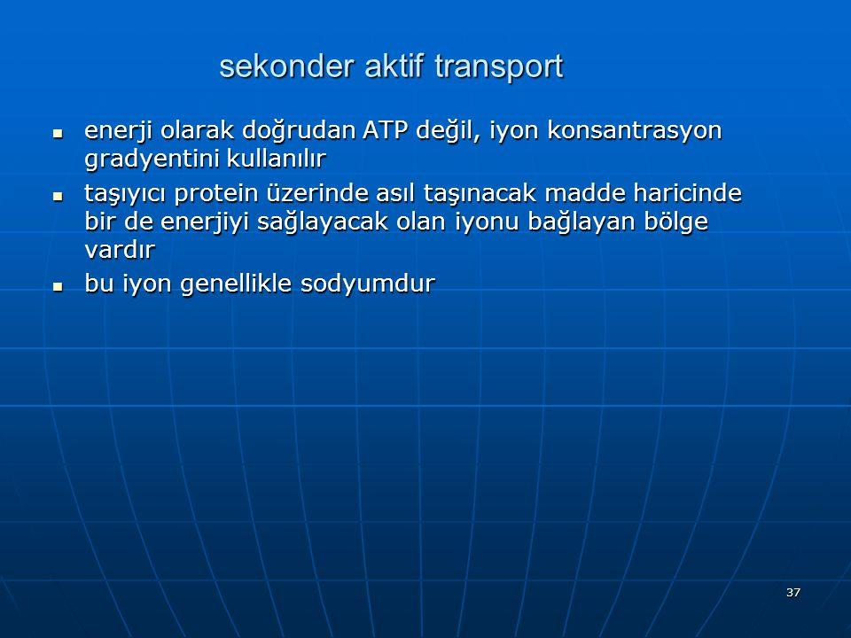37 sekonder aktif transport enerji olarak doğrudan ATP değil, iyon konsantrasyon gradyentini kullanılır enerji olarak doğrudan ATP değil, iyon konsant