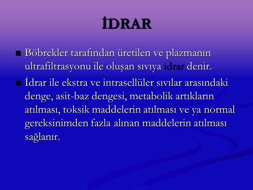 İDRAR Böbrekler tarafından üretilen ve plazmanın ultrafiltrasyonu ile oluşan sıvıya idrar denir. Böbrekler tarafından üretilen ve plazmanın ultrafiltr