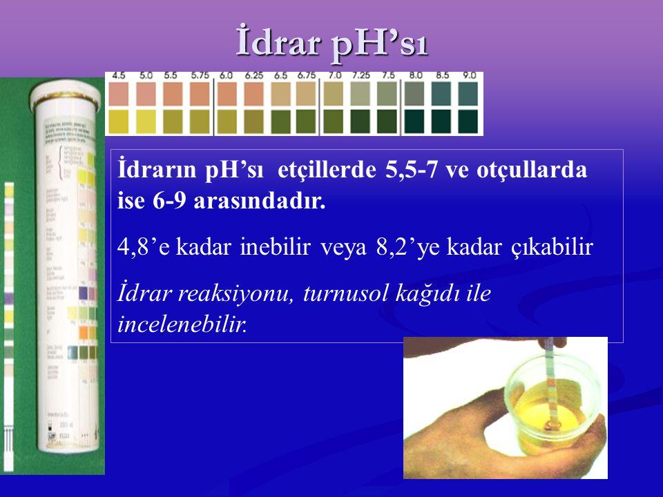 İdrar pH'sı İdrarın pH'sı etçillerde 5,5-7 ve otçullarda ise 6-9 arasındadır. 4,8'e kadar inebilir veya 8,2'ye kadar çıkabilir İdrar reaksiyonu, turnu
