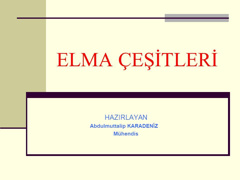 ELMA ÇEŞİTLERİ HAZIRLAYAN Abdulmuttalip KARADENİZ Mühendis