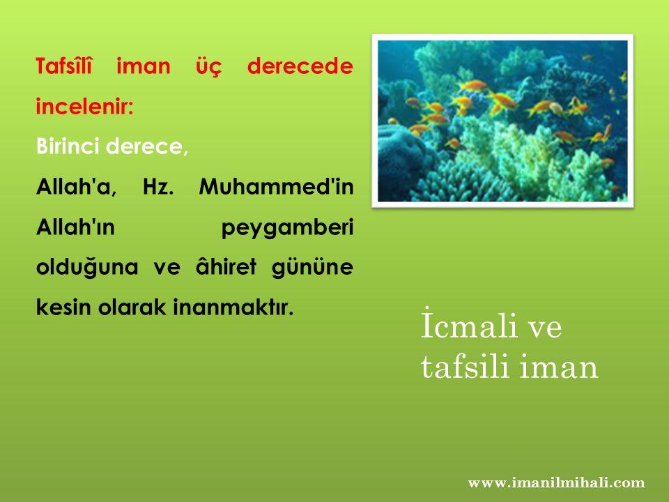 Tafsîlî iman üç derecede incelenir: Birinci derece, Allah'a, Hz. Muhammed'in Allah'ın peygamberi olduğuna ve âhiret gününe kesin olarak inanmaktır. İc