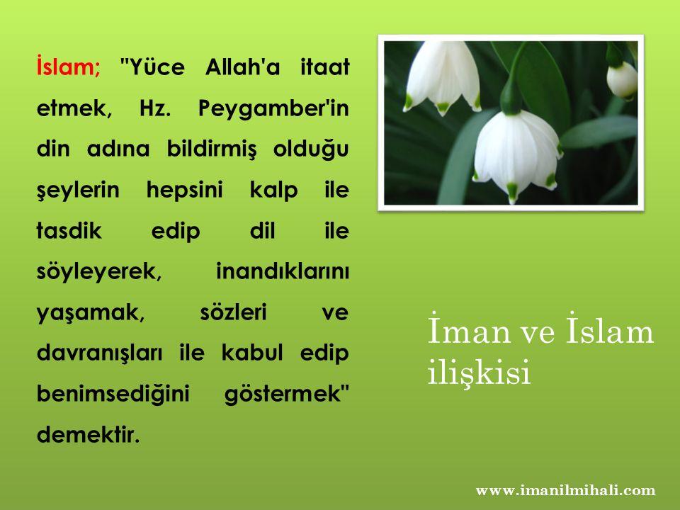 www.imanilmihali.com İslam;