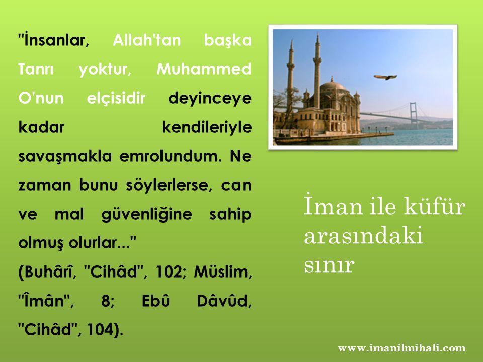 www.imanilmihali.com