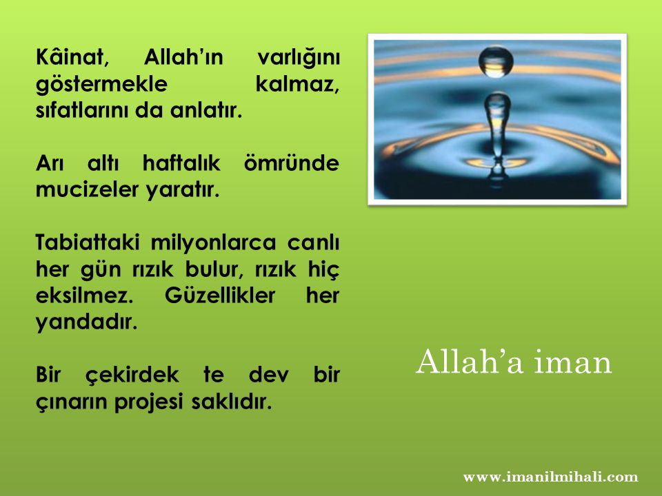 www.imanilmihali.com Kâinat, Allah'ın varlığını göstermekle kalmaz, sıfatlarını da anlatır. Arı altı haftalık ömründe mucizeler yaratır. Tabiattaki mi