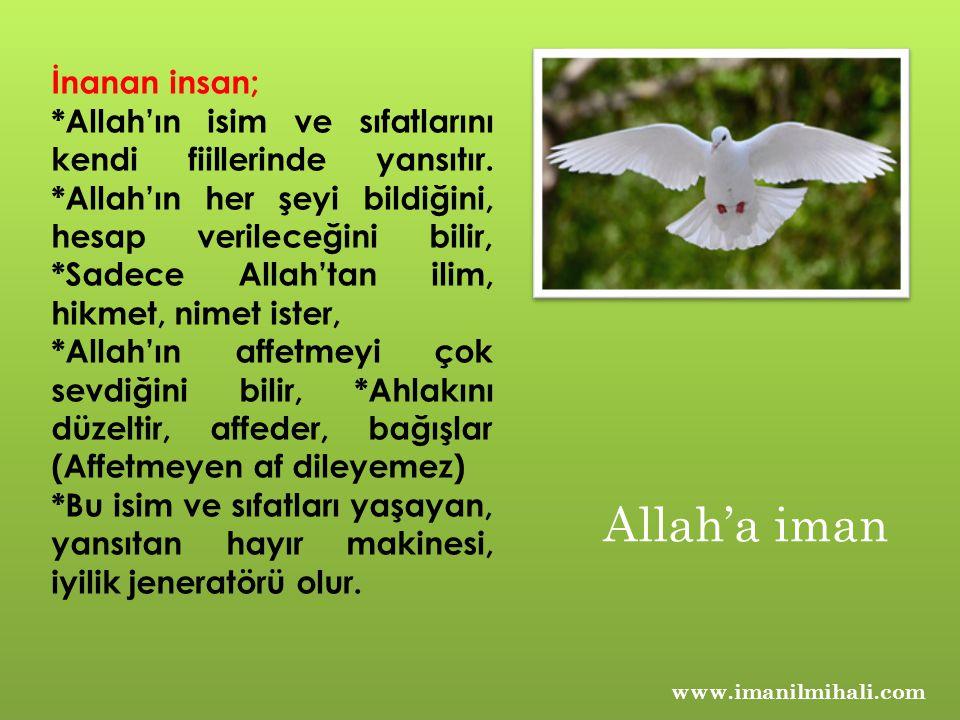 www.imanilmihali.com İnanan insan; *Allah'ın isim ve sıfatlarını kendi fiillerinde yansıtır. *Allah'ın her şeyi bildiğini, hesap verileceğini bilir, *