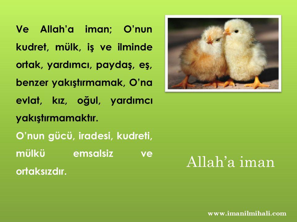 www.imanilmihali.com Ve Allah'a iman; O'nun kudret, mülk, iş ve ilminde ortak, yardımcı, paydaş, eş, benzer yakıştırmamak, O'na evlat, kız, oğul, yard