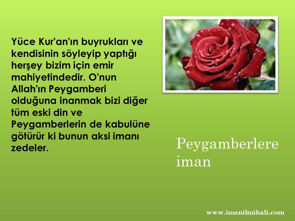 www.imanilmihali.com Yüce Kur an ın buyrukları ve kendisinin söyleyip yaptığı herşey bizim için emir mahiyetindedir.