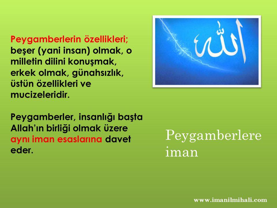 www.imanilmihali.com Peygamberlerin özellikleri; beşer (yani insan) olmak, o milletin dilini konuşmak, erkek olmak, günahsızlık, üstün özellikleri ve mucizeleridir.