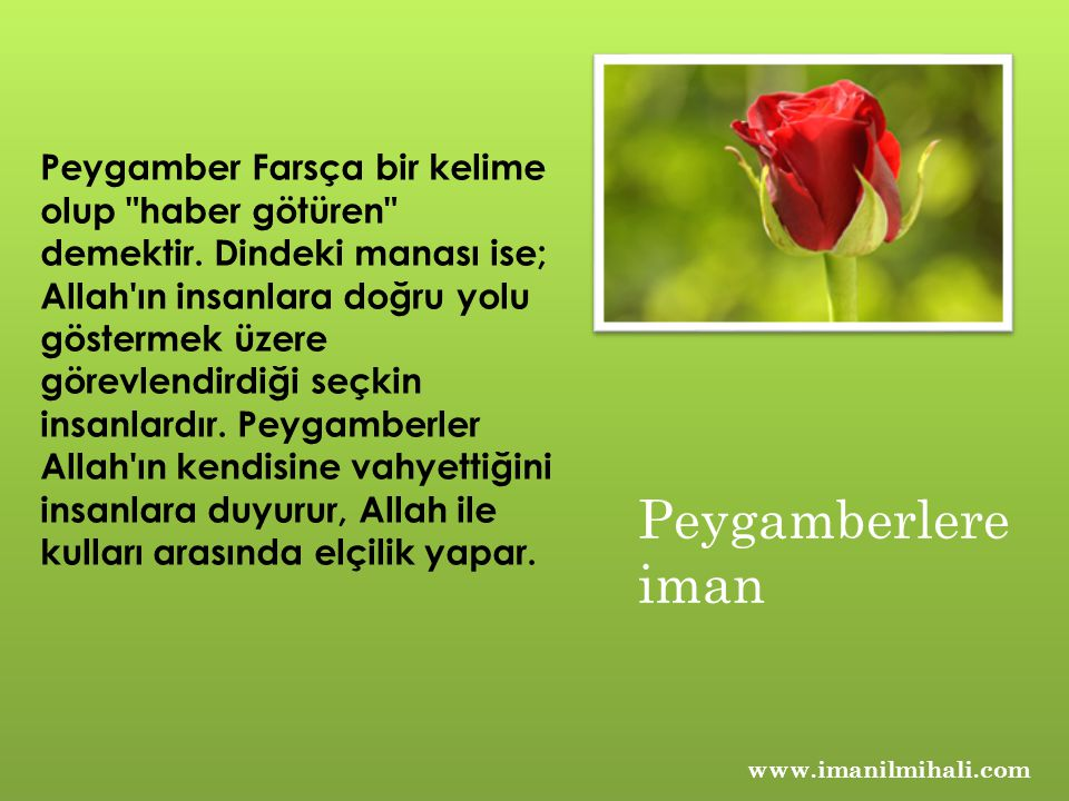 www.imanilmihali.com Peygamber Farsça bir kelime olup haber götüren demektir.
