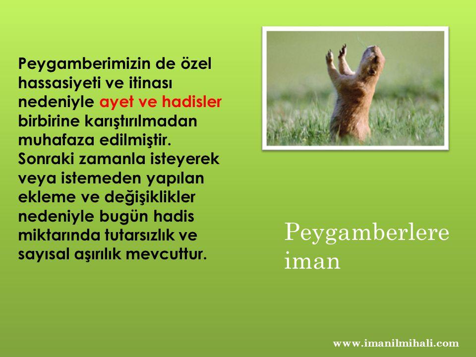 www.imanilmihali.com Peygamberimizin de özel hassasiyeti ve itinası nedeniyle ayet ve hadisler birbirine karıştırılmadan muhafaza edilmiştir.