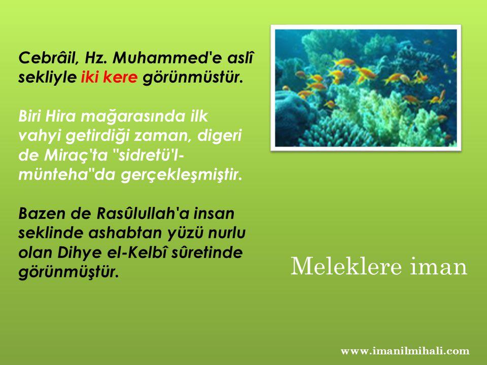 Cebrâil, Hz. Muhammed'e aslî sekliyle iki kere görünmüstür. Biri Hira mağarasında ilk vahyi getirdiği zaman, digeri de Miraç'ta