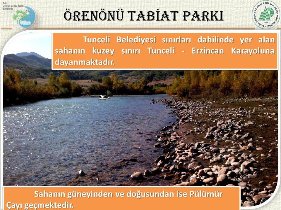 5/37 Tunceli Belediyesi sınırları dahilinde yer alan sahanın kuzey sınırı Tunceli - Erzincan Karayoluna dayanmaktadır. Sahanın güneyinden ve doğusunda