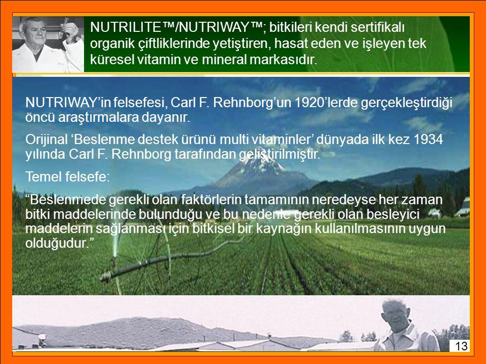 100 gram'daki mg 198519962002 Brokoli Kalsiyum1033328 Folik Asit472318 Fasulye Kalsiyum563422 Magnezyum262218 B6 Vitamini1405532 Patates Kalsiyum1443
