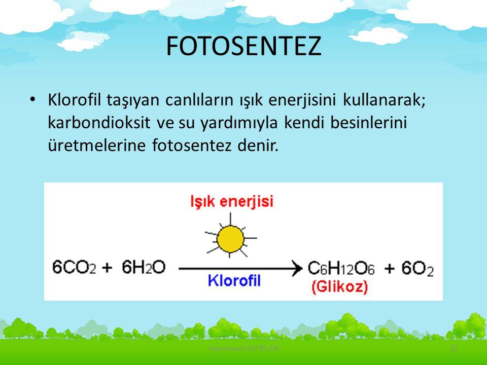 FOTOSENTEZ Klorofil taşıyan canlıların ışık enerjisini kullanarak; karbondioksit ve su yardımıyla kendi besinlerini üretmelerine fotosentez denir. Haz