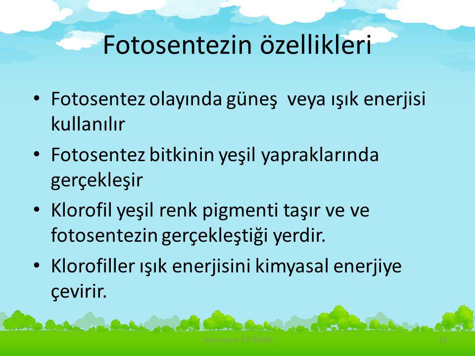 Fotosentezin özellikleri Fotosentez olayında güneş veya ışık enerjisi kullanılır Fotosentez bitkinin yeşil yapraklarında gerçekleşir Klorofil yeşil re