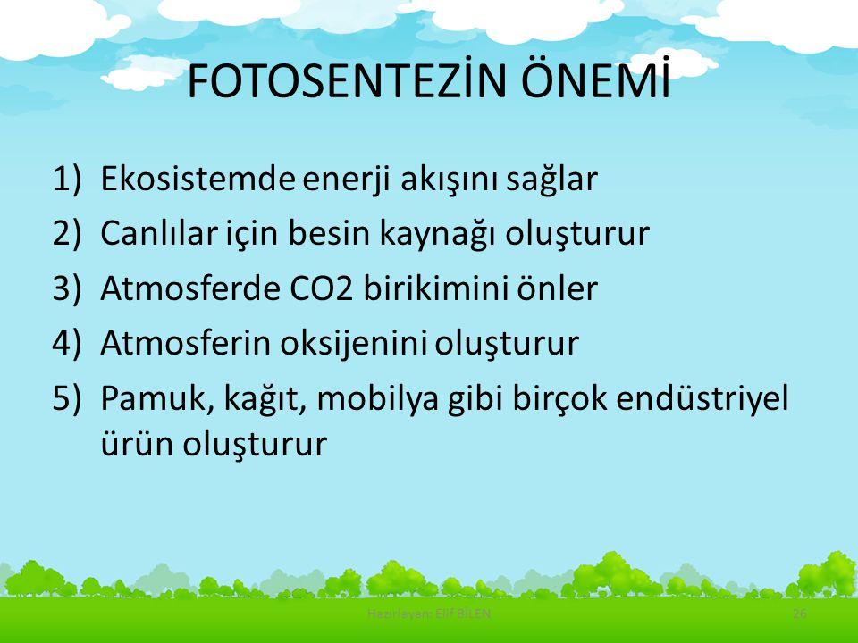 FOTOSENTEZİN ÖNEMİ 1)Ekosistemde enerji akışını sağlar 2)Canlılar için besin kaynağı oluşturur 3)Atmosferde CO2 birikimini önler 4)Atmosferin oksijeni