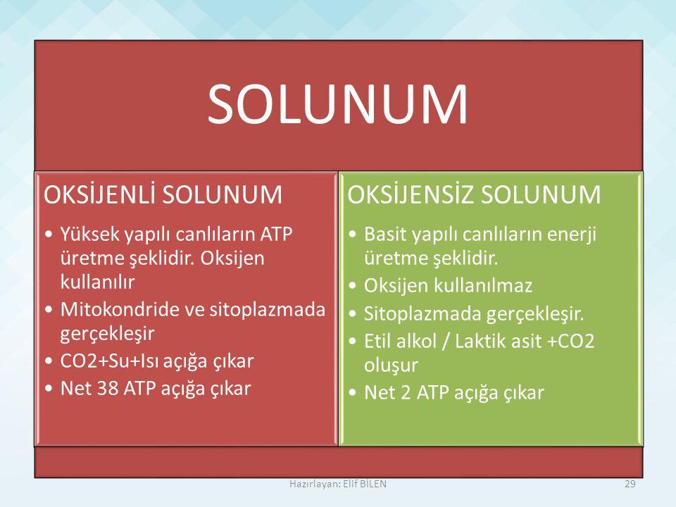 SOLUNUM OKSİJENLİ SOLUNUM Yüksek yapılı canlıların ATP üretme şeklidir. Oksijen kullanılır Mitokondride ve sitoplazmada gerçekleşir CO2+Su+Isı açığa ç
