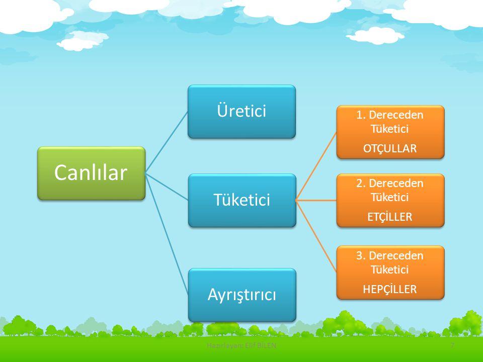 Canlılar ÜreticiAyrıştırıcıTüketici 1. Dereceden Tüketici OTÇULLAR 2. Dereceden Tüketici ETÇİLLER 3. Dereceden Tüketici HEPÇİLLER Hazırlayan: Elif BİL