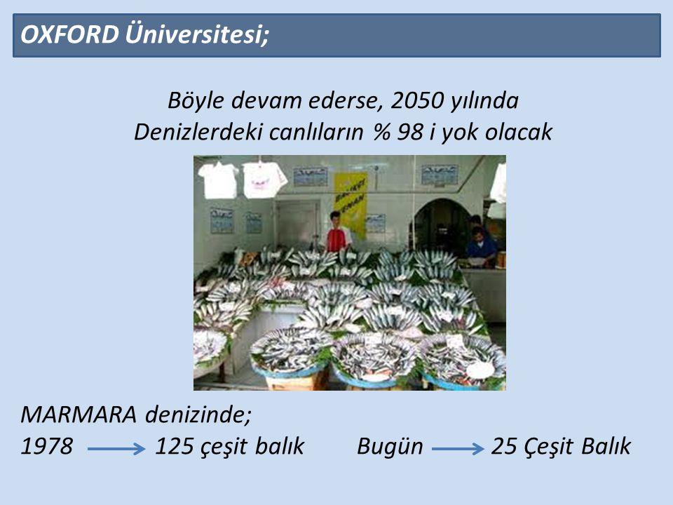 OXFORD Üniversitesi; Böyle devam ederse, 2050 yılında Denizlerdeki canlıların % 98 i yok olacak MARMARA denizinde; 1978 125 çeşit balıkBugün25 Çeşit Balık