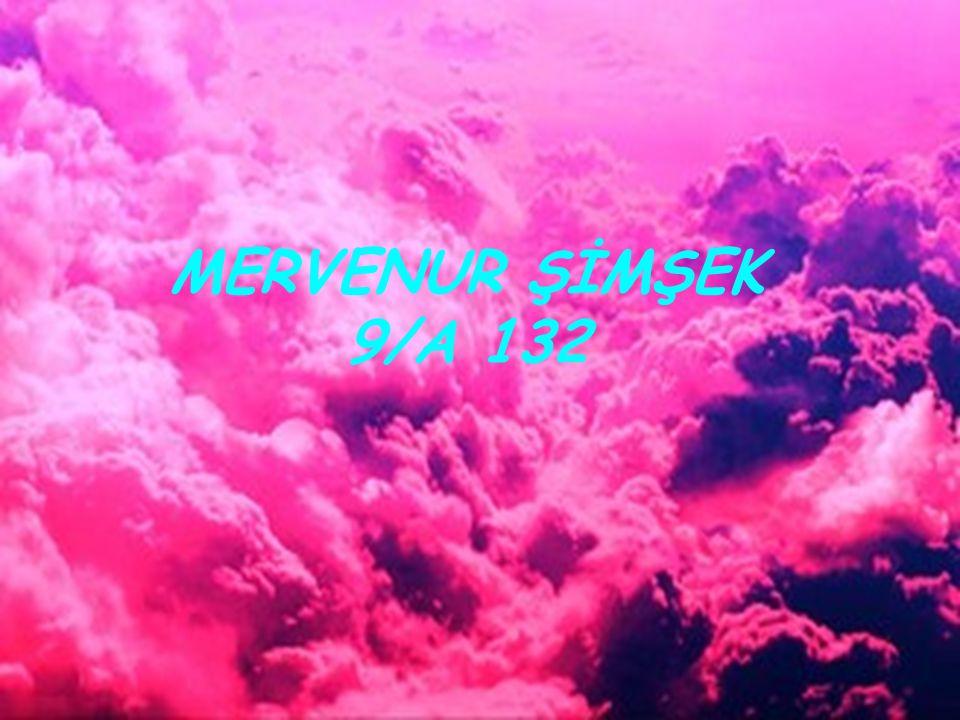 MERVENUR ŞİMŞEK 9/A 132
