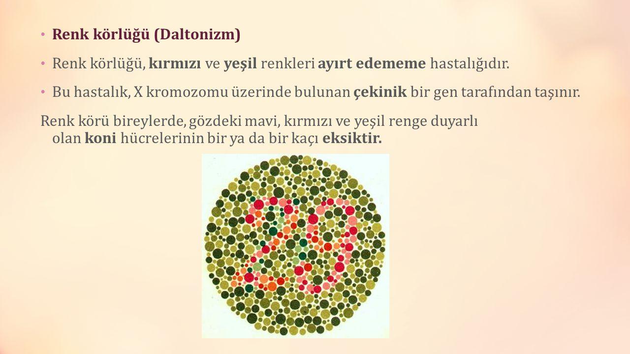 Renk körlüğü (Daltonizm) Renk körlüğü, kırmızı ve yeşil renkleri ayırt edememe hastalığıdır. Bu hastalık, X kromozomu üzerinde bulunan çekinik bir gen