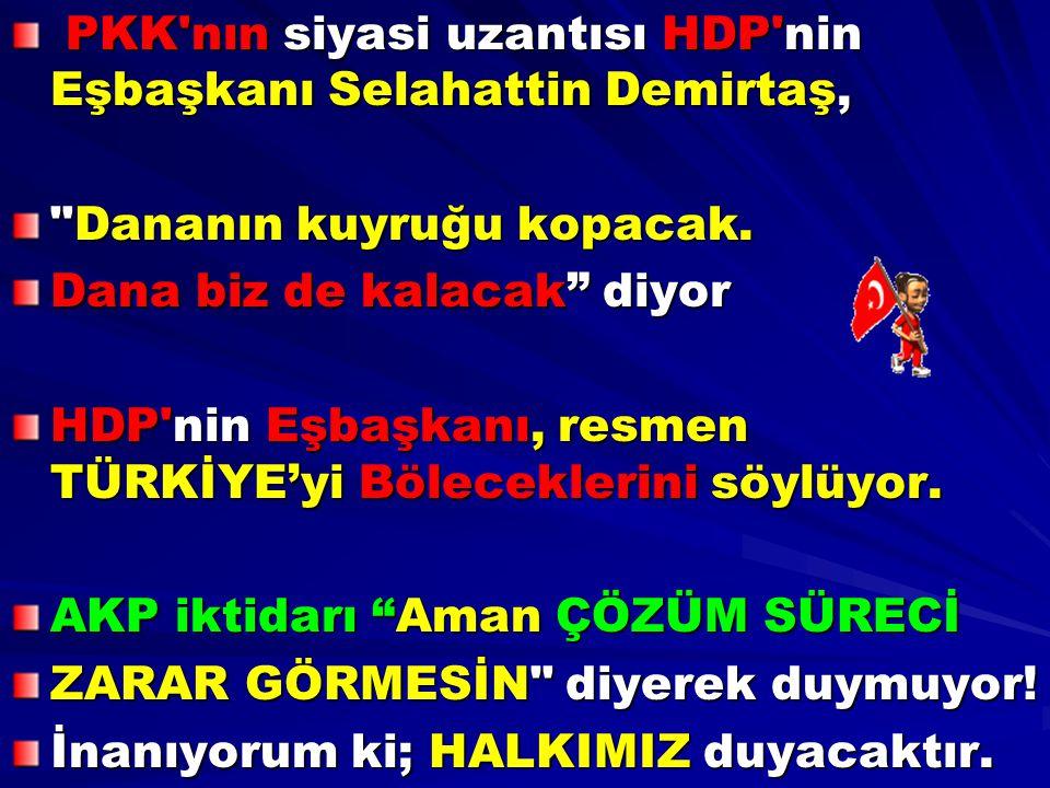 PKK'nın siyasi uzantısı HDP'nin Eşbaşkanı Selahattin Demirtaş, PKK'nın siyasi uzantısı HDP'nin Eşbaşkanı Selahattin Demirtaş,