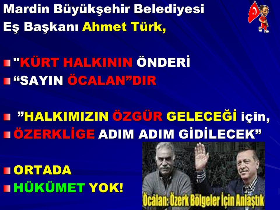 Mardin Büyükşehir Belediyesi Eş Başkanı Ahmet Türk,
