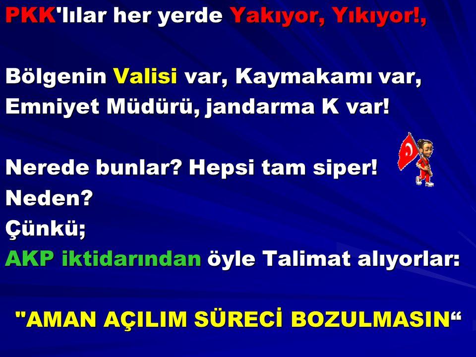 PKK'lılar her yerde Yakıyor, Yıkıyor!, Bölgenin Valisi var, Kaymakamı var, Emniyet Müdürü, jandarma K var! Nerede bunlar? Hepsi tam siper! Neden?Çünkü