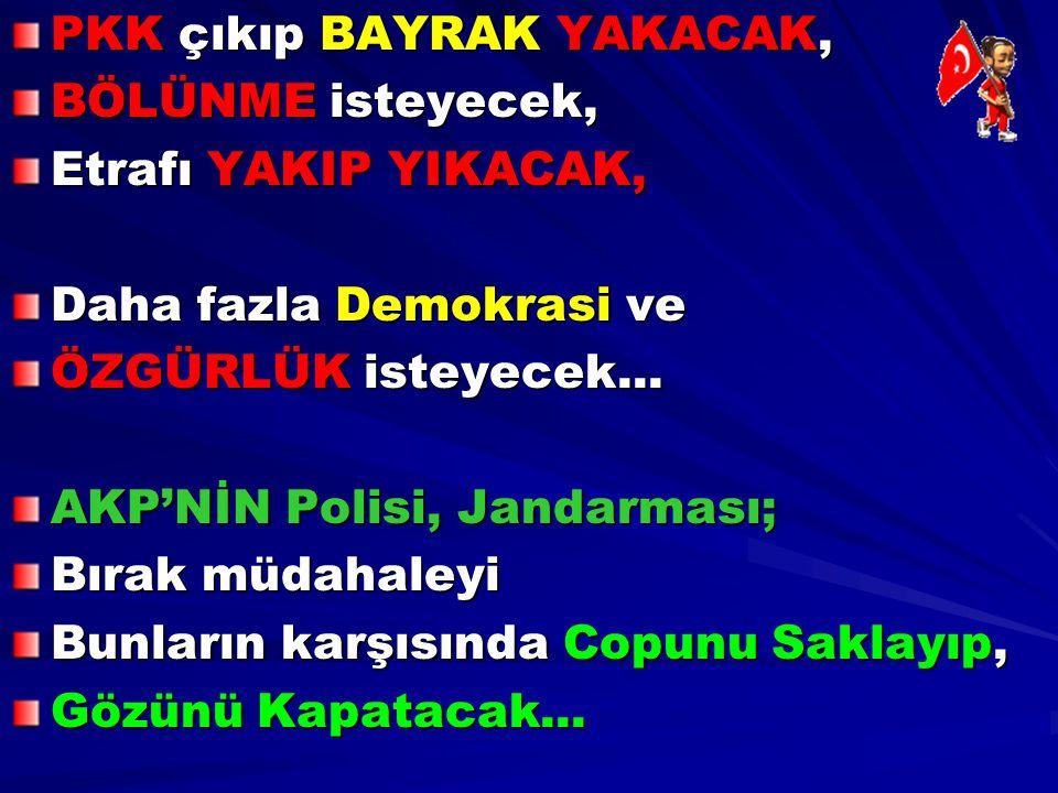 PKK çıkıp BAYRAK YAKACAK, BÖLÜNME isteyecek, Etrafı YAKIP YIKACAK, Daha fazla Demokrasi ve ÖZGÜRLÜK isteyecek... AKP'NİN Polisi, Jandarması; Bırak müd