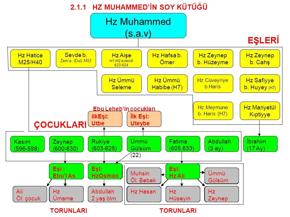 Hz Hatice M25/H40 Sevde b. Zem'a (Dul) M53 Hz Aişe H1-H2 evlendi 623-624 Hz Hafsa b. Ömer Hz Zeynep b. Hüzeyme Hz Zeynep b. Cahş Hz Muhammed (s.a.v) H