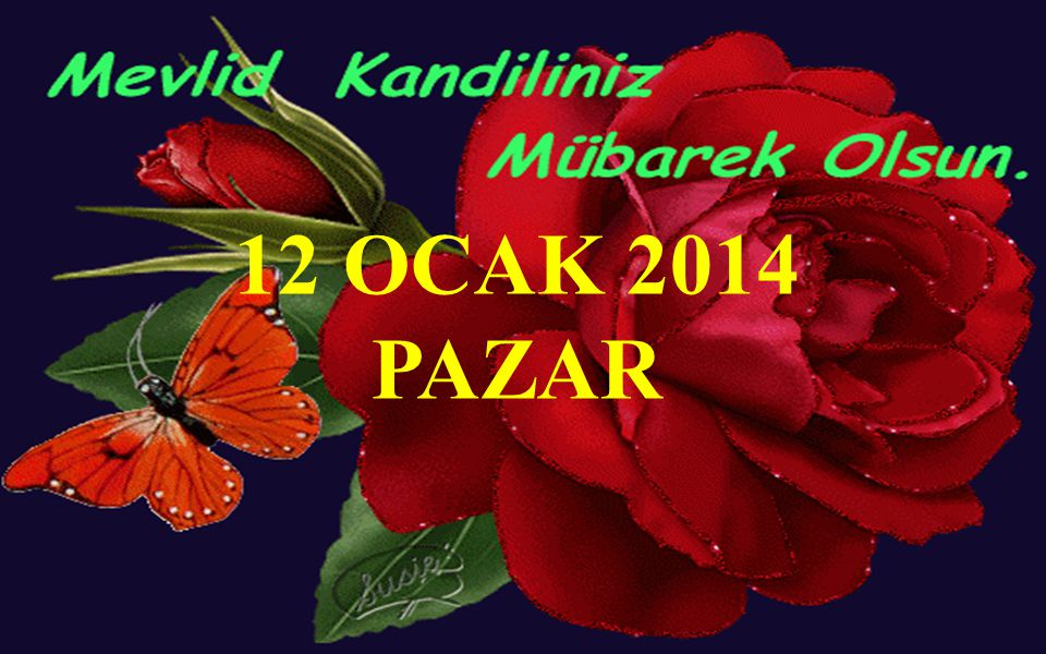 12 OCAK 2014 PAZAR