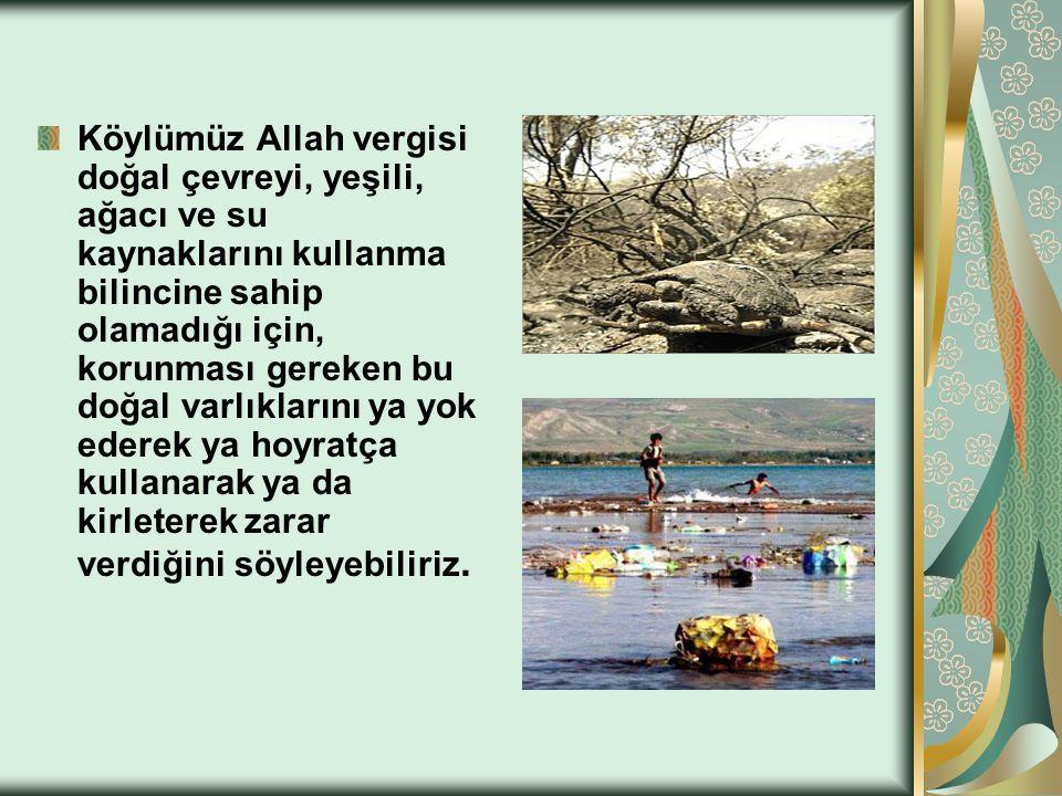 Köylümüz Allah vergisi doğal çevreyi, yeşili, ağacı ve su kaynaklarını kullanma bilincine sahip olamadığı için, korunması gereken bu doğal varlıkların