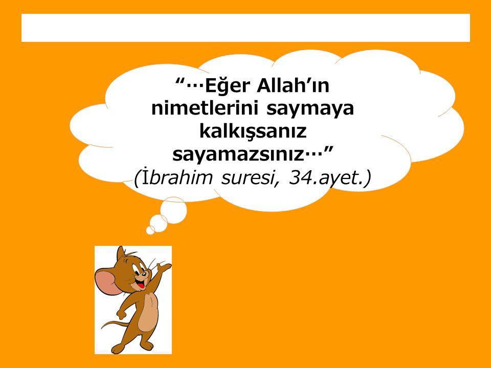 """""""…Eğer Allah'ın nimetlerini saymaya kalkışsanız sayamazsınız…"""" (İbrahim suresi, 34.ayet.)"""