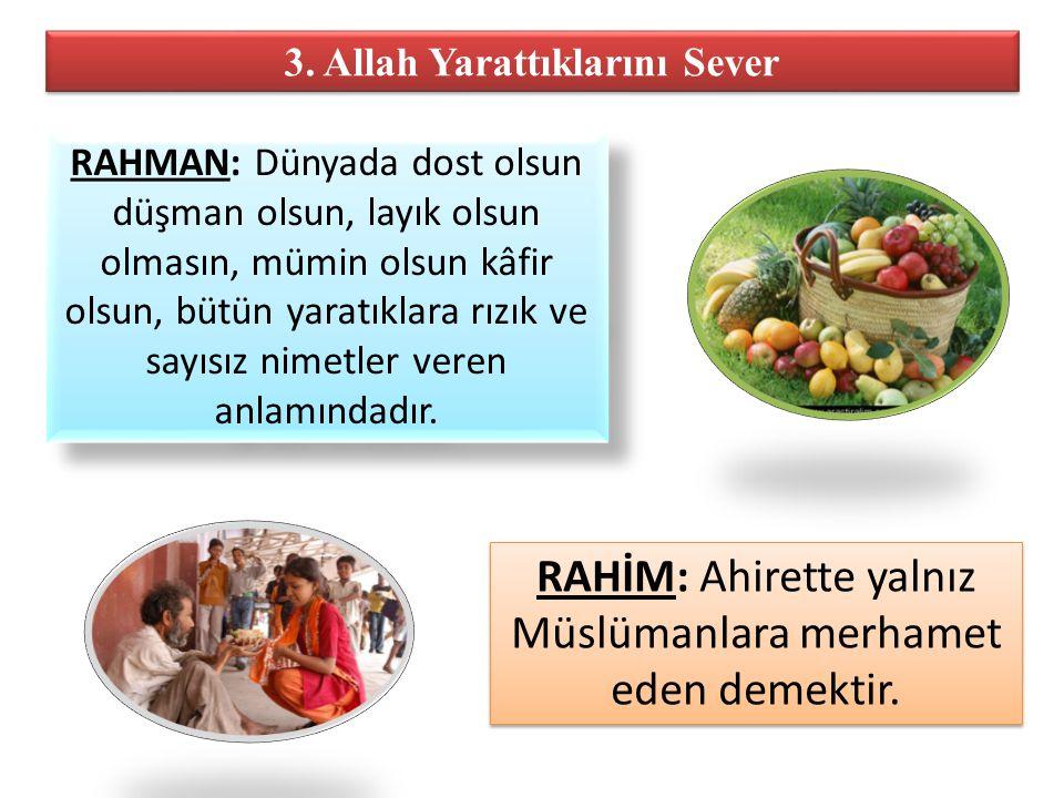 3. Allah Yarattıklarını Sever RAHMAN: Dünyada dost olsun düşman olsun, layık olsun olmasın, mümin olsun kâfir olsun, bütün yaratıklara rızık ve sayısı