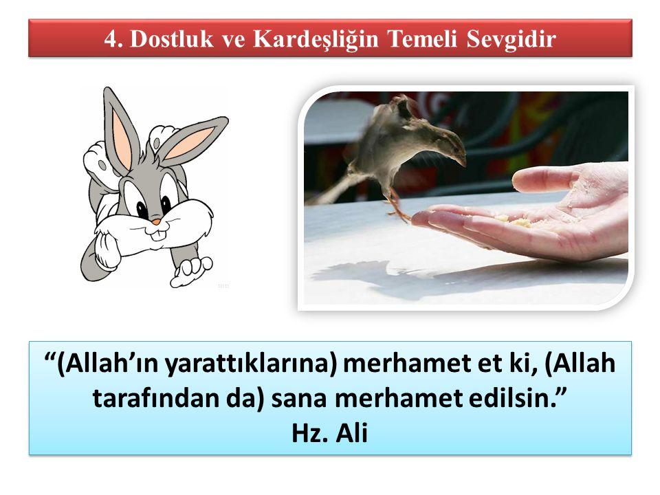 """4. Dostluk ve Kardeşliğin Temeli Sevgidir """"(Allah'ın yarattıklarına) merhamet et ki, (Allah tarafından da) sana merhamet edilsin."""" Hz. Ali """"(Allah'ın"""