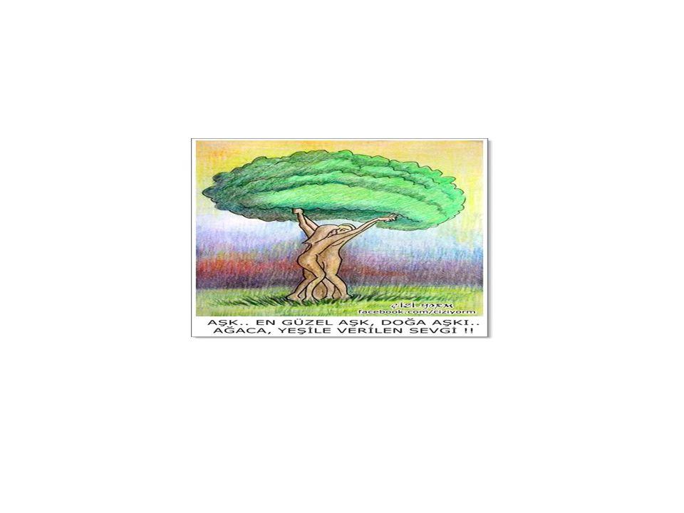 Çevre Hukukunun tanımı Yer kürede canlı yaşamı mümkün kılan, sınırlı olan doğan kaynakların korunmasına ilişkin hukuk kurallarının bütünüdür.